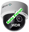 IQinVision IQA31WE-A3 Alliance-pro H.264 WDR 720p Exterior Day/Night Vandal Dome Camera 3-8mm AZF Lens